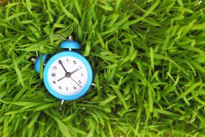 clock morning routine